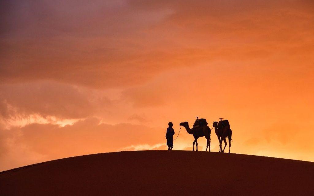 Viagem de 4 Dias - Deserto, Kasbahs e Draa