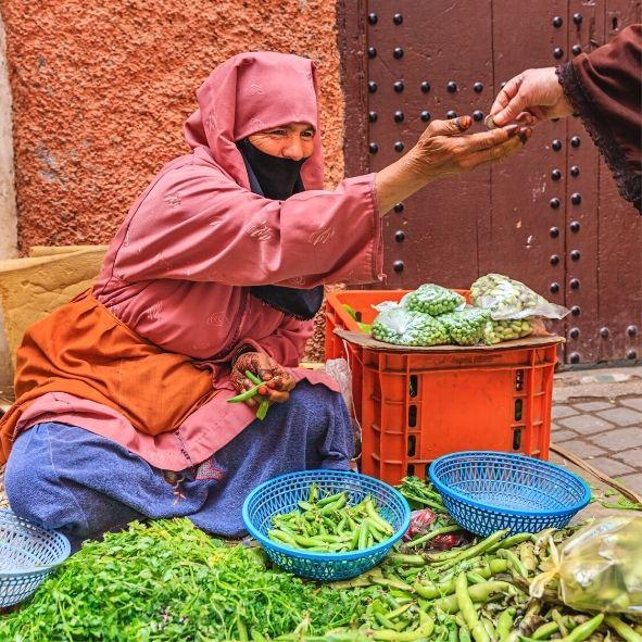 Passeios desde Marraquexe Marrocos